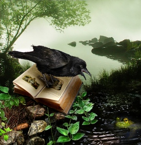 Raven and book