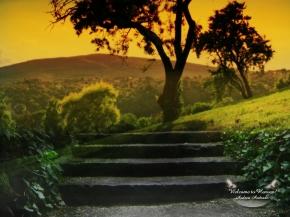 20-те Най-удивителни природни светлинни явления http://www.belladonna-bg.com/2010/10/light-sky-phenomen.html